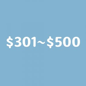 $301~$500