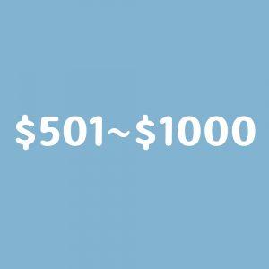 $501~$1000