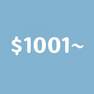 $1001~
